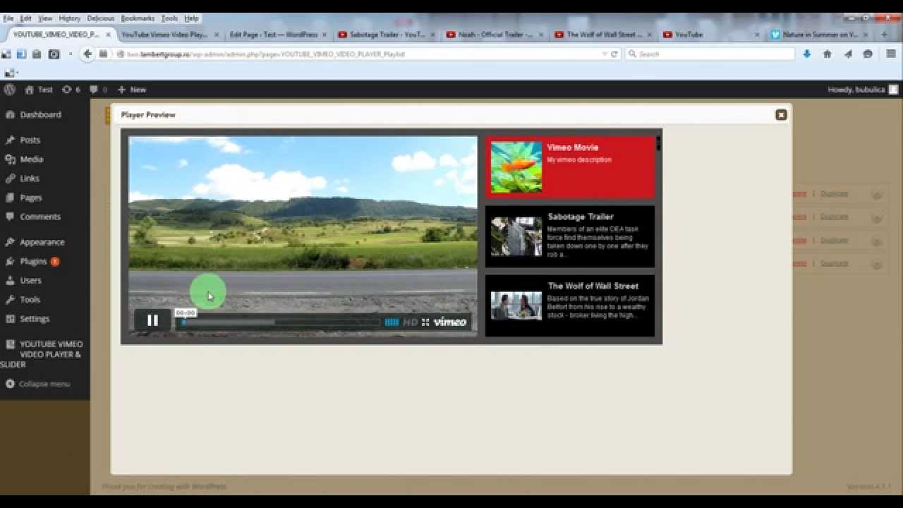 Youtube Vimeo Video Player & Slider WordPress Plugin - how to create a video player