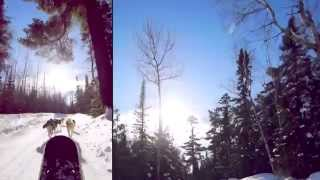 Dogsledding & Skiing | Boundary Waters