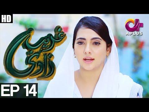 Ghareebzaadi - Episode 14 - A Plus ᴴᴰ Drama