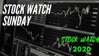 Stock Market isn't Crashing! Top 5 Stocks to Watch, TSLA, SPCE, AMD, HD | Stock Watch Sunday