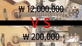 1200만원 기타 VS 20만원 기타 비교