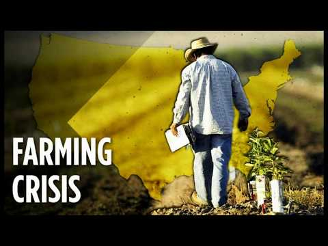 US Farming Crises: It's Not Just Corn! Farmers Face Chance Of Failing To Plant Soybeans
