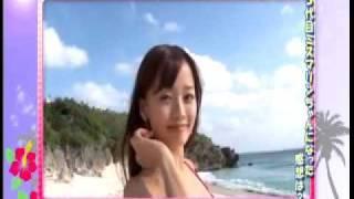 キクヤ春日井店HP http://www.p-tora.com/toukai/hall/index.html?no=...