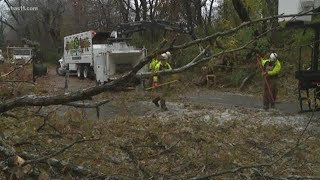 Kentuckiana cleaning up downed trees