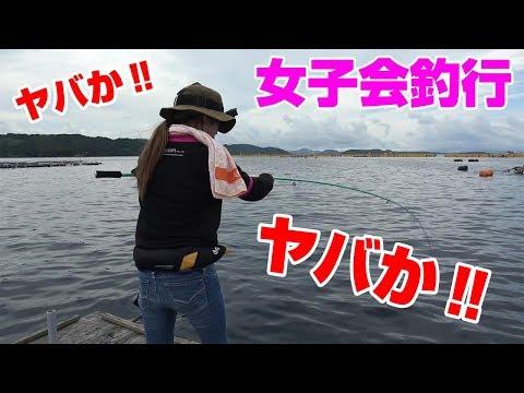 釣りいろは しまけいこ