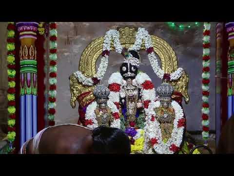 Sri Adi Kesava Perumal Temple / 2018 teppam fest (first day)