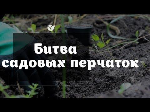 Битва садовых перчаток | Какой твой стиль | Agro-market.netиз YouTube · С высокой четкостью · Длительность: 2 мин45 с  · Просмотров: 401 · отправлено: 06.09.2017 · кем отправлено: Agro-Market.net