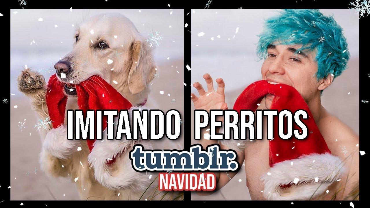 Imitando Fotos De Perritos Tumblr Navideñas I Tiago Sarmiento Youtube
