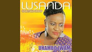 Gambar cover Amanxeba