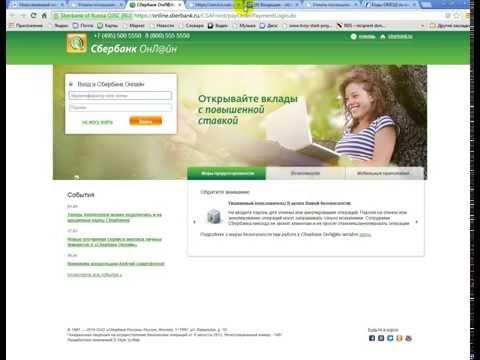 Как платить госпошлину за регистрацию ИП