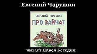 """Про зайчат""— Евгений Чарушин—  читает Павел Беседин"