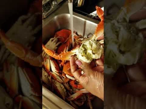 How to clean & open Blue Crabs (read below in description)