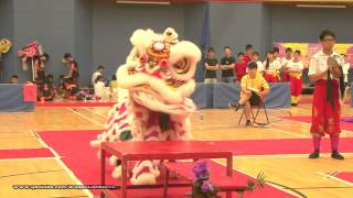 第21屆全港公開學界龍獅藝錦標賽:中學獅藝地青組 - (9)