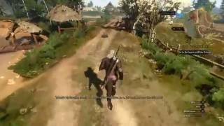 Witcher 3 The Invisible Horse Trick (Glitchy Fun)