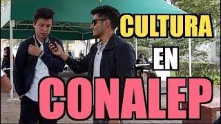 Conalep Vs Cultura General