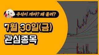 [웃지] 7월 30일 관심주 - 스맥,디아이씨,명신산업…