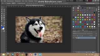 Рисунок в фотошопе CS6 l Видео Урок.