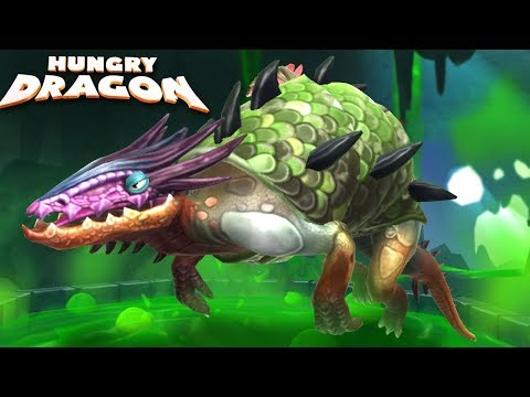 NEW LEGENDARY ARMORDILLO DRAGON!!! - Hungry Dragon Ep22