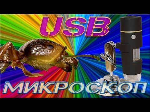 USB Микроскоп 50-1000x из Китая