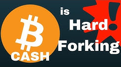 Bitcoin Cash (BCH) is Hard Forking in November 2017