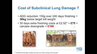 Reducing Pneumonia Risk in Beef and Dairy Calves – Challenges and solutions Webinar