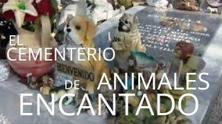 El cementerio de animales encantado ...