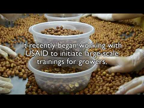 Hazelnut production, USAID Azerbaijan