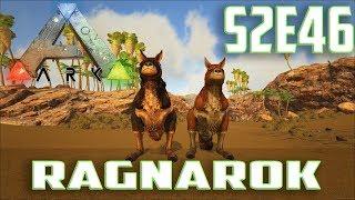Let's Play ARK: Survival Evolved (Single Player Ragnarok)Ep.46-Taming & Breeding Procoptodon's
