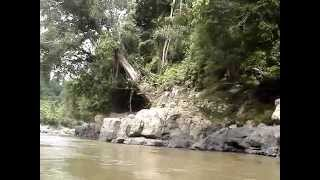 BORNEO ACCESS ADVENTURE The Most Extreme Adventure in Kalimantan