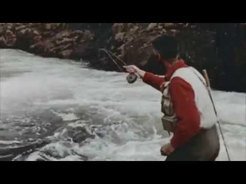 Lee Wulff On Dry Fly Fishing For Atlantic Salmon