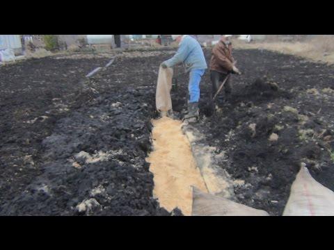 Подымаем дачный участок - закапываем опилки