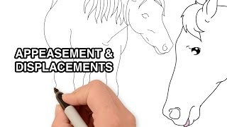 Horse body language: appeasement & displacement behaviours | Animated Series Episode 7