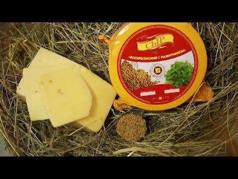 Буйский сыр удостоился звания лучшего в России