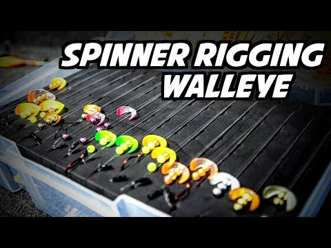 How To Spinner Rig For Walleye (Advanced Tips)