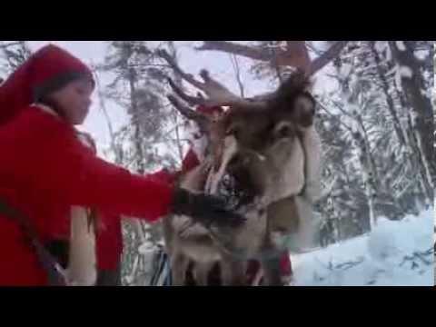 Селцето на Дядо Коледа в Лапландия, Рованиеми, Финландия
