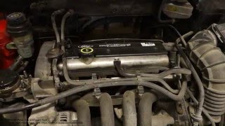 How to replace radiator coolant liquid Ford Zetec engine. Years 1995 to 2015