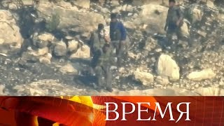 СК РФ опубликовал новое видео по делу об убийстве российских военнослужащих в Сирии.