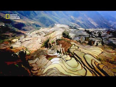 Yuanyang, Yunnan - rice terraces 雲南元陽