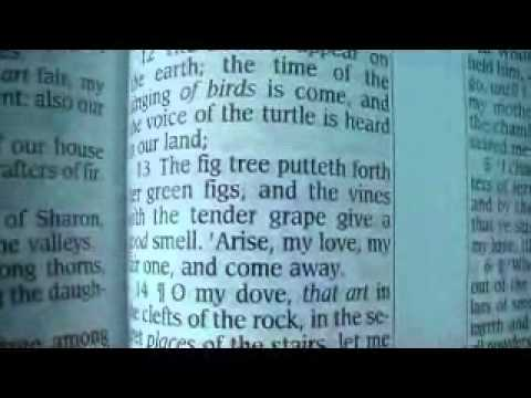 Song Of Solomon 2 Holy Bible (King James)