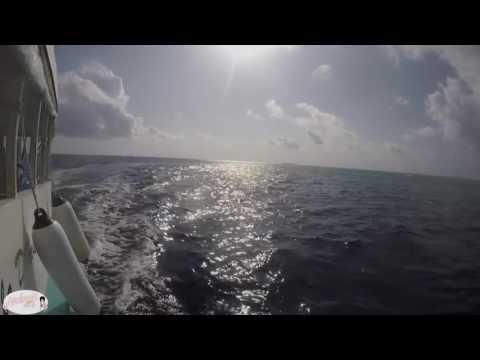 Travel diary : Les Maldives {N°1}