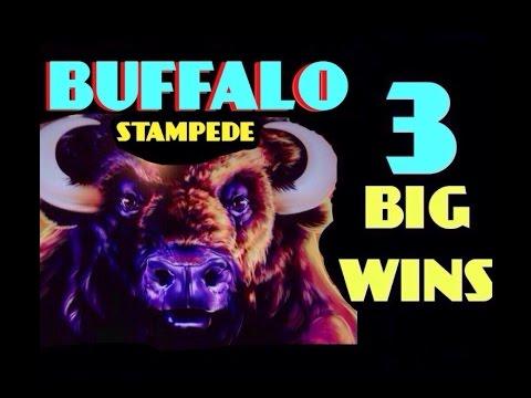 $100 slot machine big win