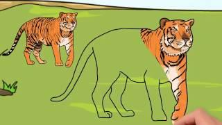 Мультфильм про животных жарких стран. Развивающие мультики для детей до 4 х лет.