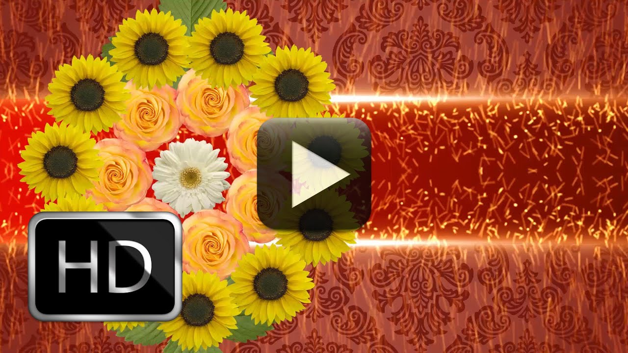 Full HD Wedding Background Video Loop Free Downloads - YouTube