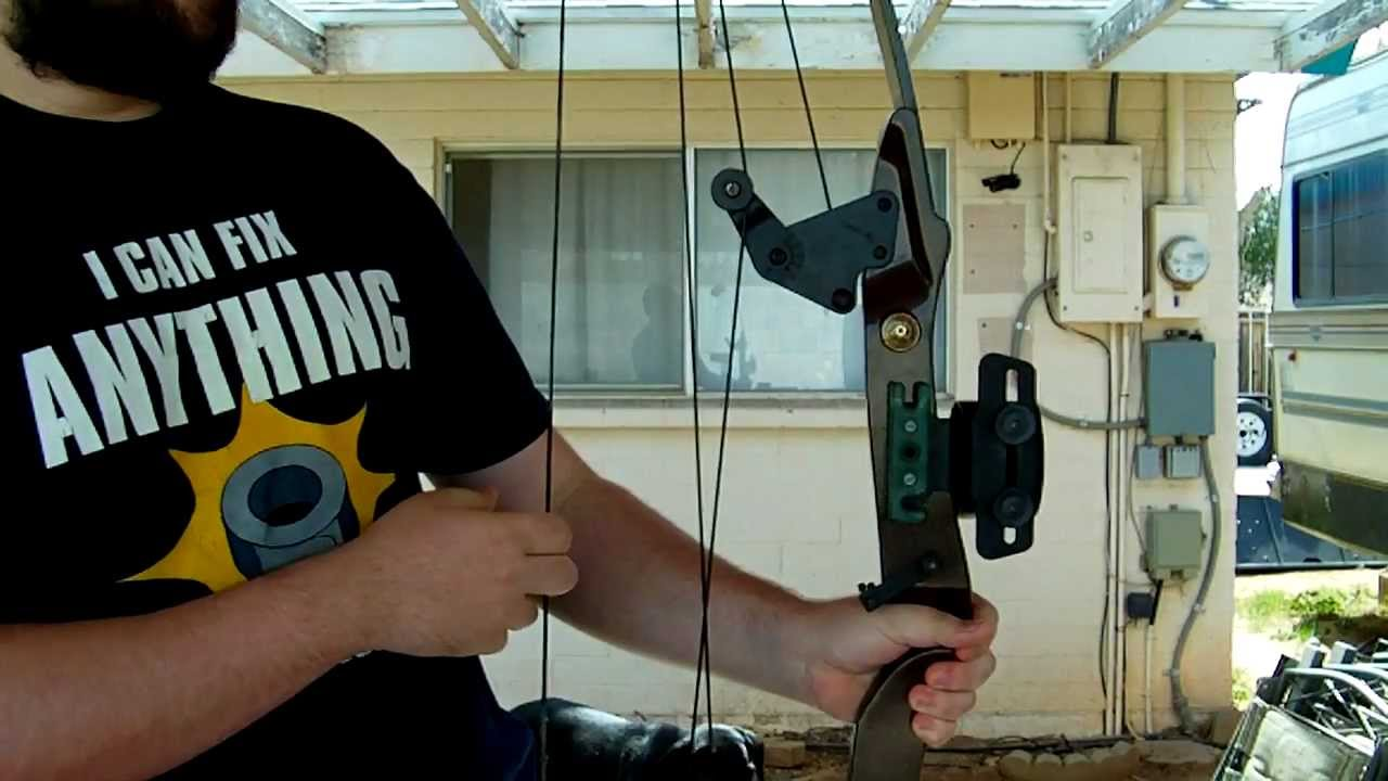 bear whitetail hunter compound bow review