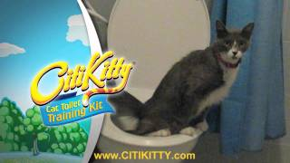 More Cat Toilet Training Success with CitiKitty