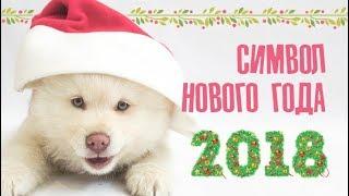 Слайд-шоу «Символ Нового года»