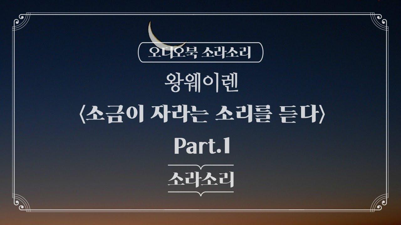오디오북 | 소금이 자라는 소리를 듣다  Part.1 - 성우 윤소라 | 소라소리 시즌 1