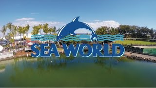Download lagu VLOG SEA WORLD GOLD COAST AUSTRALIA MP3