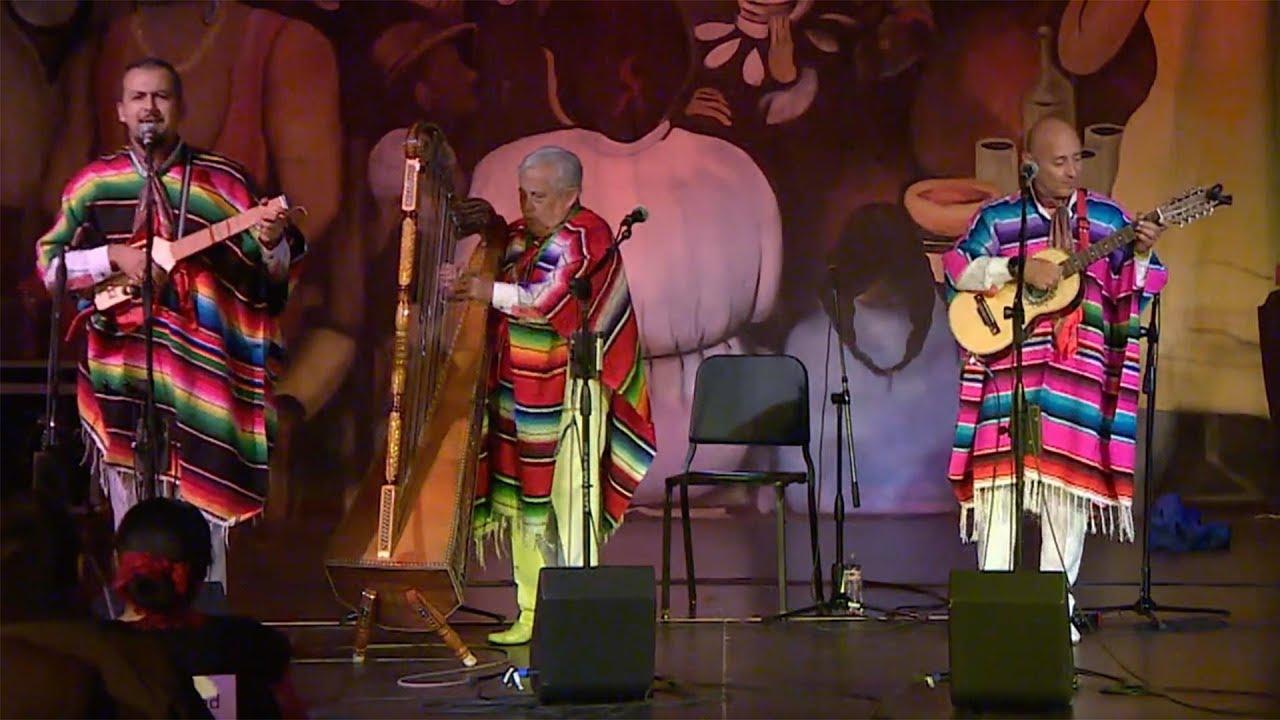 Latino Arts/Rosa Feliciano
