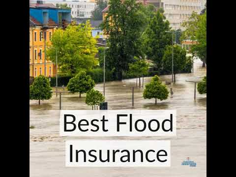 How To Get Flood Insurance Quotes YouTube Beauteous Flood Insurance Quotes